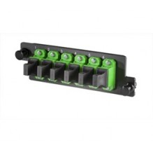 Infinium High Density 6 Way Singlemode MPO Adaptor Panel