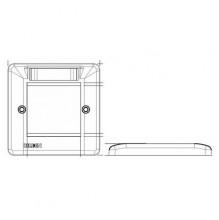 Belden Faceplate (50x50mm) 2x Euro Module Outlet Faceplate
